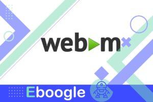 que es archivo webm 01